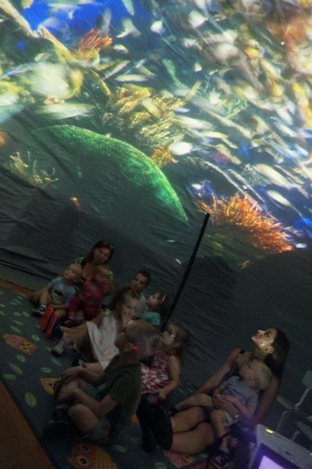 Przygoda w oceanarium